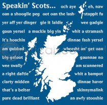 Speakin' Scots Icon Colour Art Greetings Card