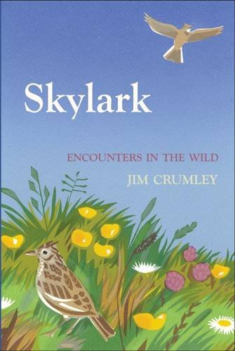 Encounters in the Wild: Skylark