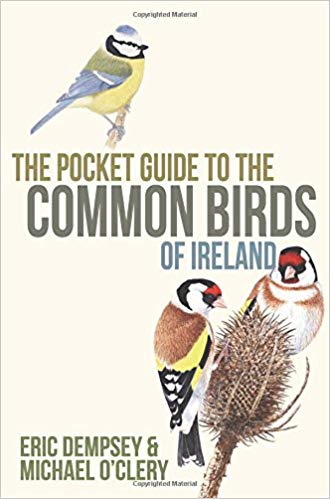 Pocket Guide To Common Birds Of Ireland