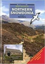 Kittiwake Best Walks In Northern Snowdonia