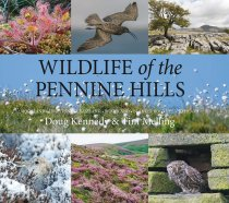 Wildlife of the Penine Hills (Sep)
