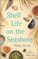 Shell Life on the Seashore (Aug)
