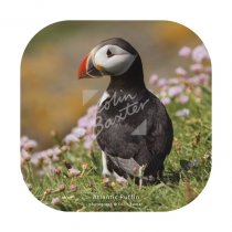 Atlantic Puffin in Seapinks Coaster