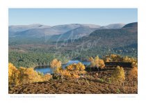Cairngorm Mountains Print