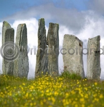 Callanish Stones (Colour)