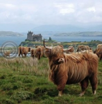 Highlanders At Duart Castle (Art)