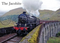 Jacobite on Glenfinnan Viaduct Magnet (H)