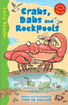 Crabs, Dabs & Rock Pools