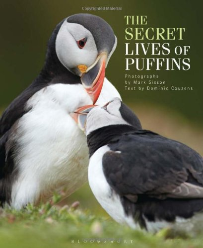 Secret Lives of Puffins, The