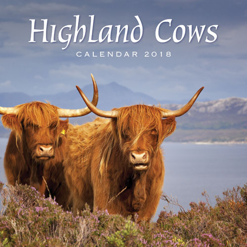 2018 Calendar Highland Cows (2 for £5)