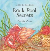 Rock Pool Secrets Lift the Flap