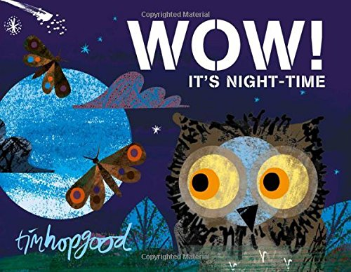 Wow! It's Nighttime Board Book (Oct)