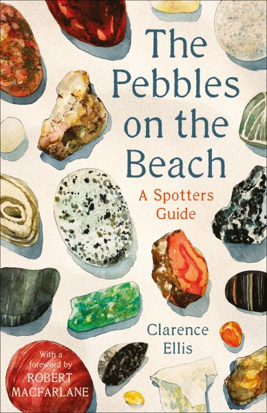 Pebbles on the Beach: Spotter's Guide (Aug)