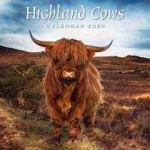 2020 Calendar Highland Cows (2 for 6v) (Mar)