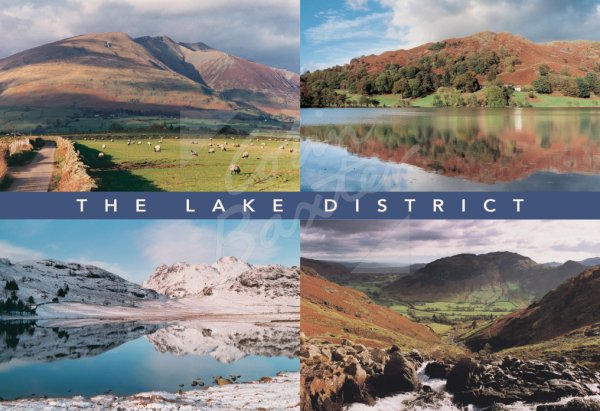 South Lakes Comp, Lake District Postcard (H Std CB)