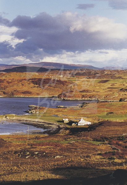 Erraid & Ross of Mull, Argyll Postcard (V Std CB)