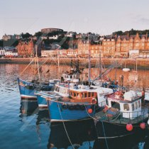 Oban Harbour, Argyll Greetings Card (CB)