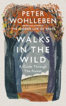 Walks in the Wild: A guide through the Forest
