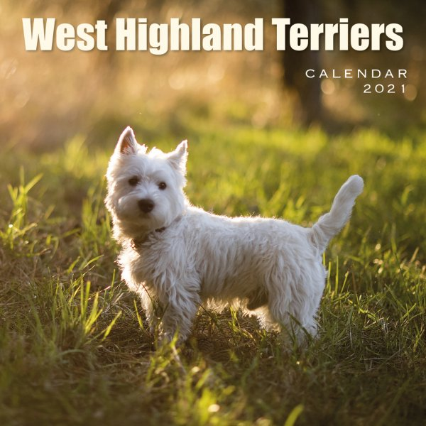 2021 Calendar West Highland Terriers (2 for £6v) (Mar)