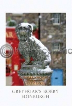 Greyfriars Bobby In Snow (VA6)