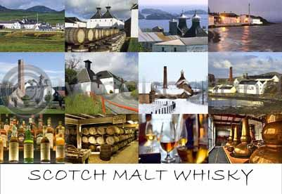 Scotch Whisky (HA6)