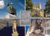 Robert the Bruce Composite Magnet (H LY)